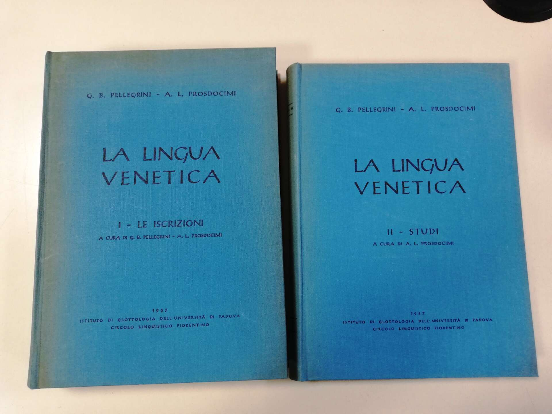 lingua venetica